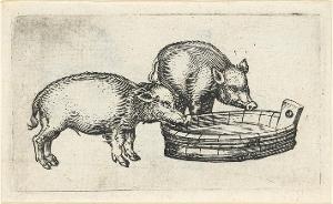 Zwei Milchschweinchen, 15. Jahrhundert