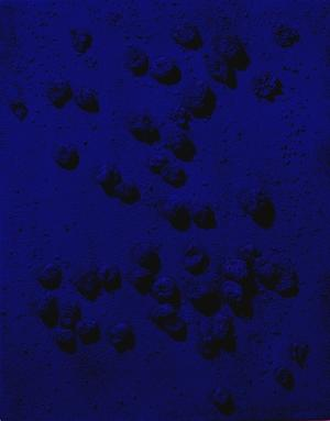 Relief éponge bleu  (RE6)  (Blaues Schwammrelief, RE 6)), 1961