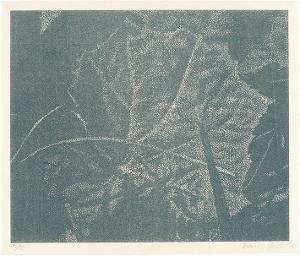 Pestwurz (Beilage zu:  Die Kunst liegt in der Natur. Wer sie herausreissen kann, der hat sie.), 1994