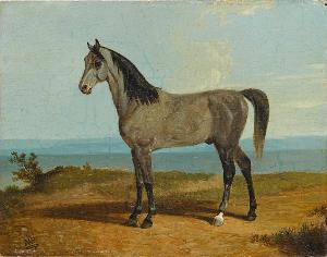 Pferd aus dem königlichen Leibstall, nicht datiert