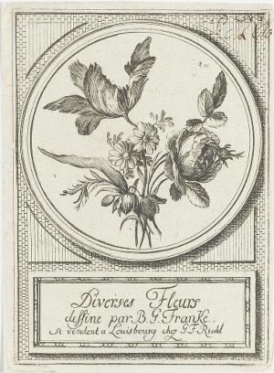 Verschiedene Blüten, vor 1779