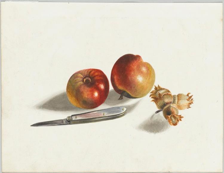 Äpfel, Haselnüsse, Messer