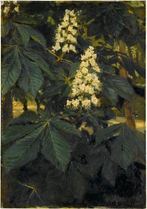 Kastanienblüten, 1906