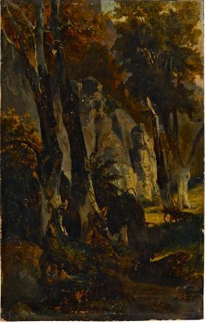 Felsen im Wald, nicht datiert