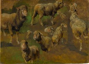 Schafstudien, nicht datiert